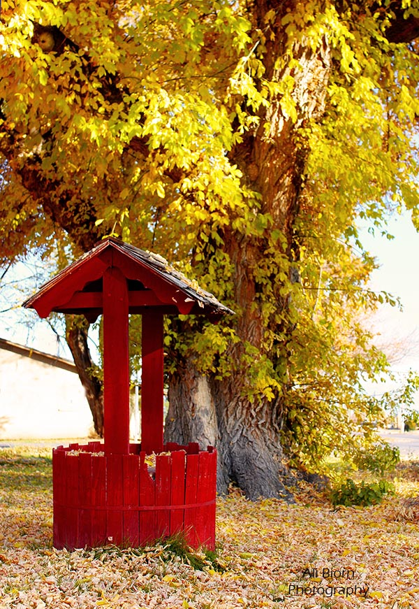 red wishing well in countryside lakeshore utah