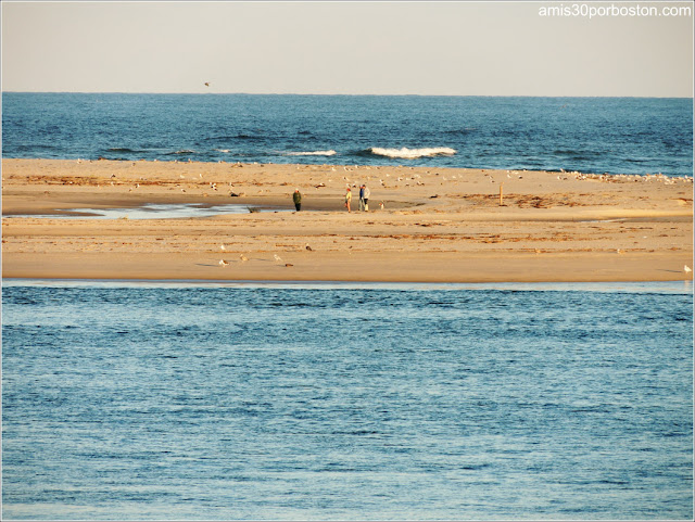 Playas de Massachusetts: Chatham Lighthouse Beach