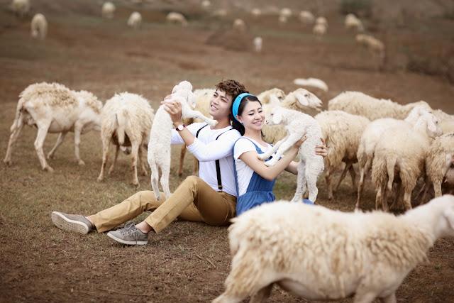 Đồng cừu Suối Nghệ (Bà Rịa - Vũng Tàu)