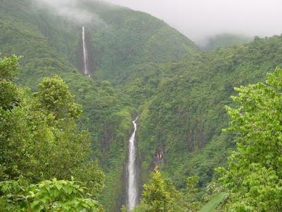 Cascade du Carbet dans la forêt tropicale
