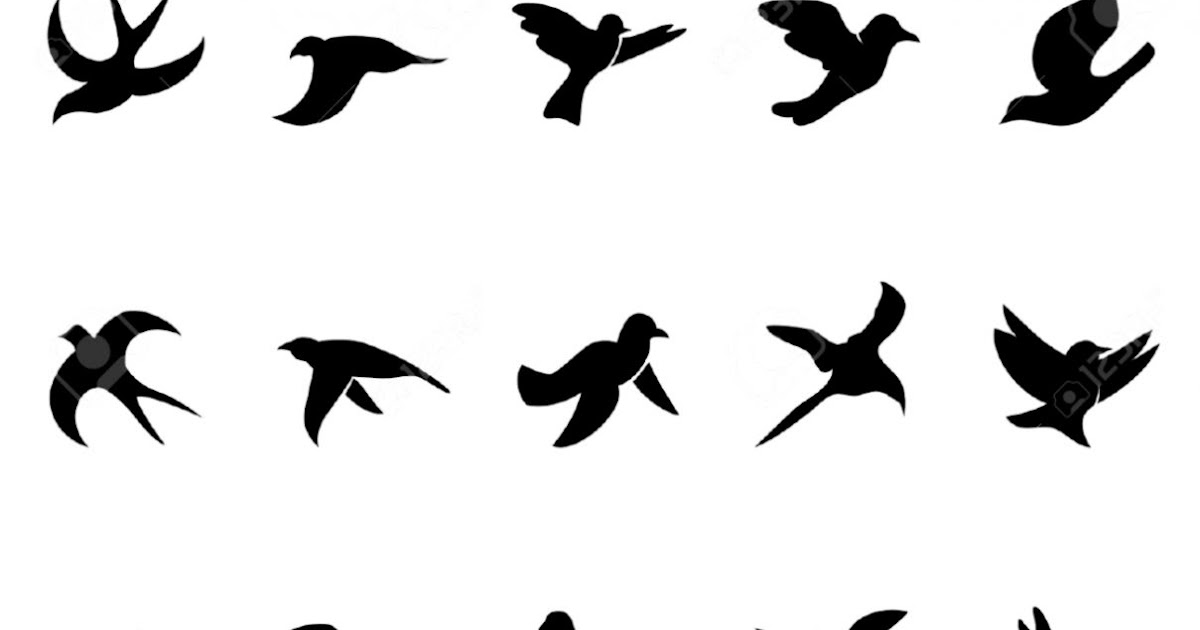 Simple Flying Bird Outline   Wallpapers Gallery