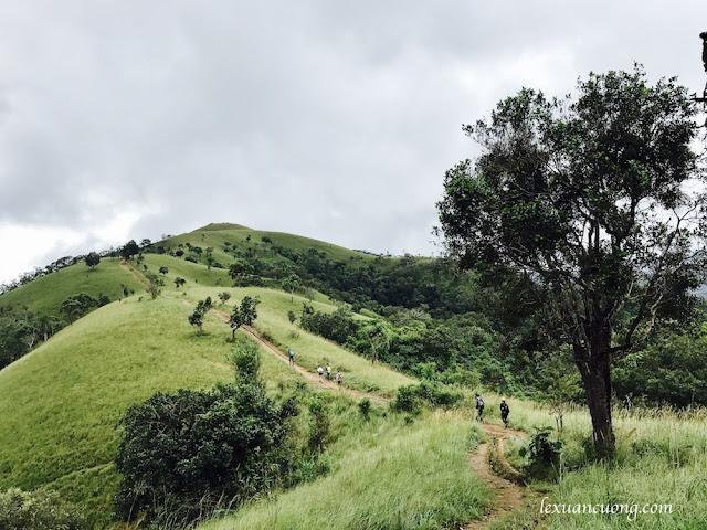 Trekking%2BTa%2BNang%2BPhan%2BDung%2B10 - Cung đường trekking Tà Năng - Phan Dũng ngày trở lại, mùa mưa 2016