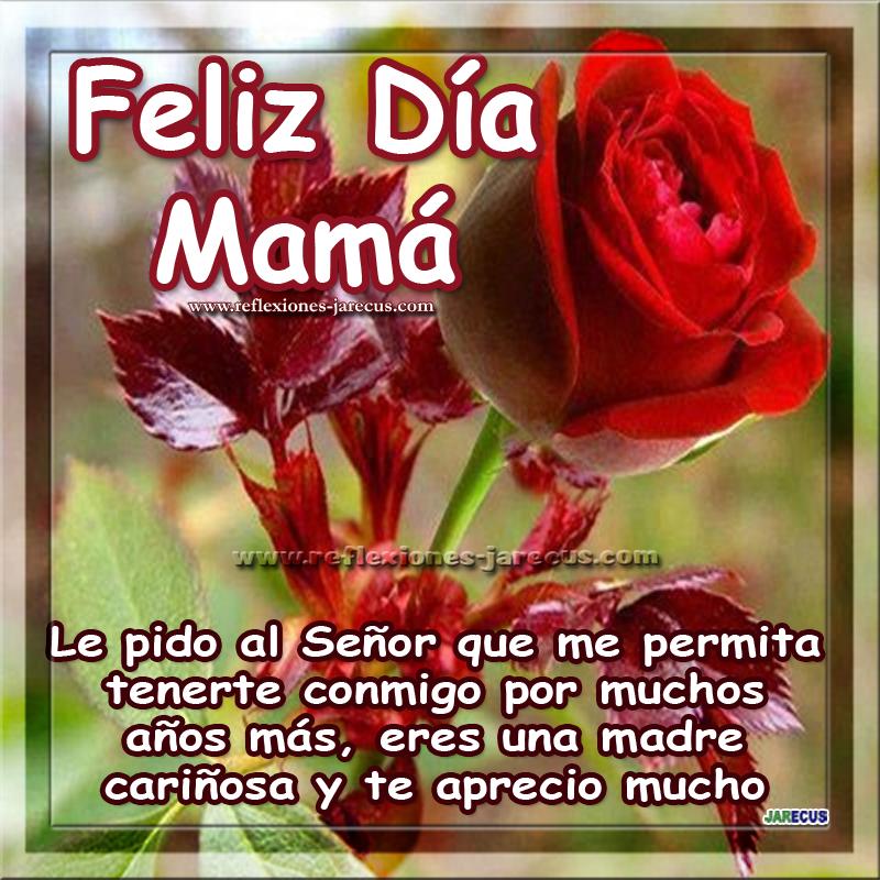 Feliz día mamá, le pido al Señor que me permita tenerte conmigo por muchos años más, eres una madre cariñosa y te aprecio mucho. Felicidades en este día.