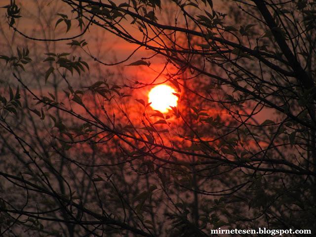 Закат в Лагерном саду, Томск