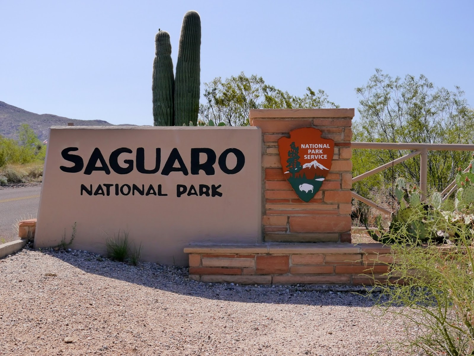 american travel journal red hills visitor center saguaro national park. Black Bedroom Furniture Sets. Home Design Ideas