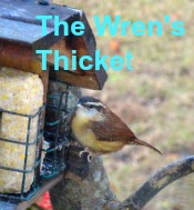 thewrensthicket.blogspot.com