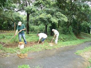 Moradores do bairro Jaraguá cavam canaleta para impedir que as águas das chuvas passem sobre as raízes do ipê-rosa. Foto: acervo Mitsiotis