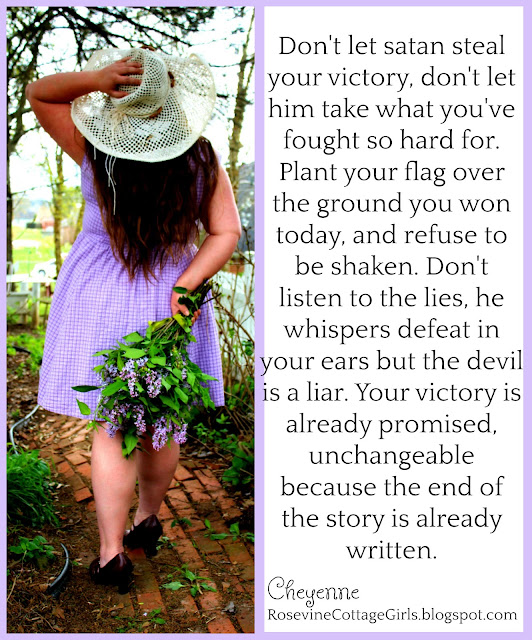 Don't let satan steal your victory, don't let him take what you've fought so hard for. Plant your flag over the ground you won today, and refuse to be shaken. Don't listen to the lies, he whispers defeat in your ears but the devil is a liar. Your victory is already promised, unchangeable because the end of the story is already written.
