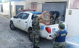 Guarda Municipal de Natal (RN) resgata aves silvestres no bairro de Nossa Senhora da Apresentação
