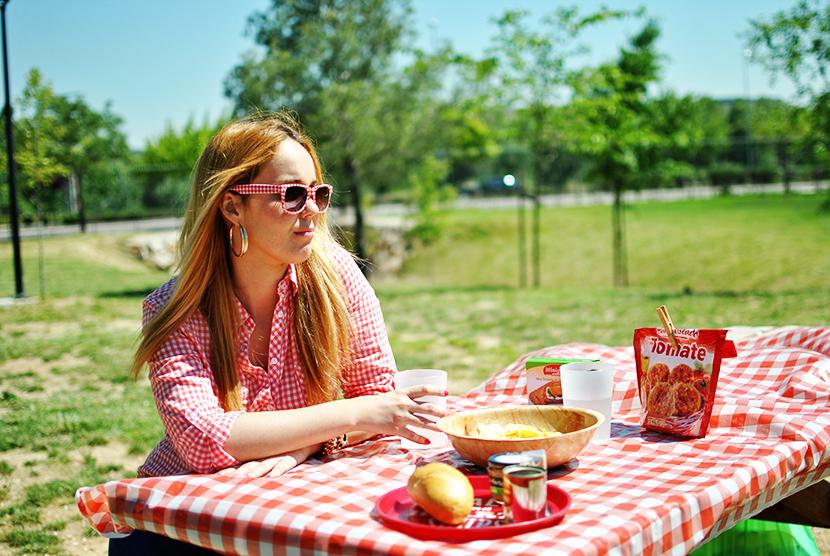 SNB, tela vicky, campestre, picnic,vans, blog de moda