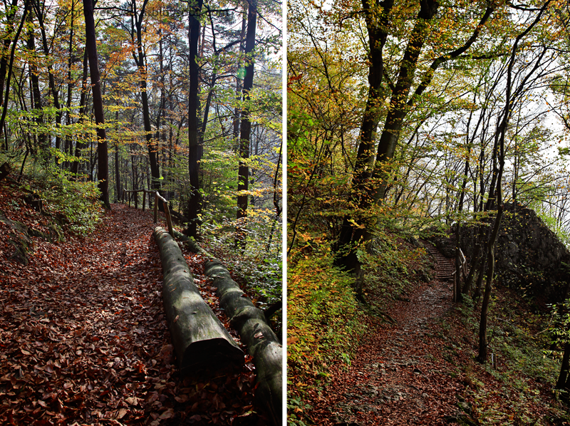 Ojców, Ojcowski Park Narodowy, małopolskie, Dolina Prądnika, Góra Koronna