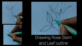 How to draw Rose leaves outline ,how to draw Rose with pencil step by step tutorial, how to draw rose beginners, drawing step by step tutorial of Rose drawing ,pencil drawing ,beginners drawing of rose