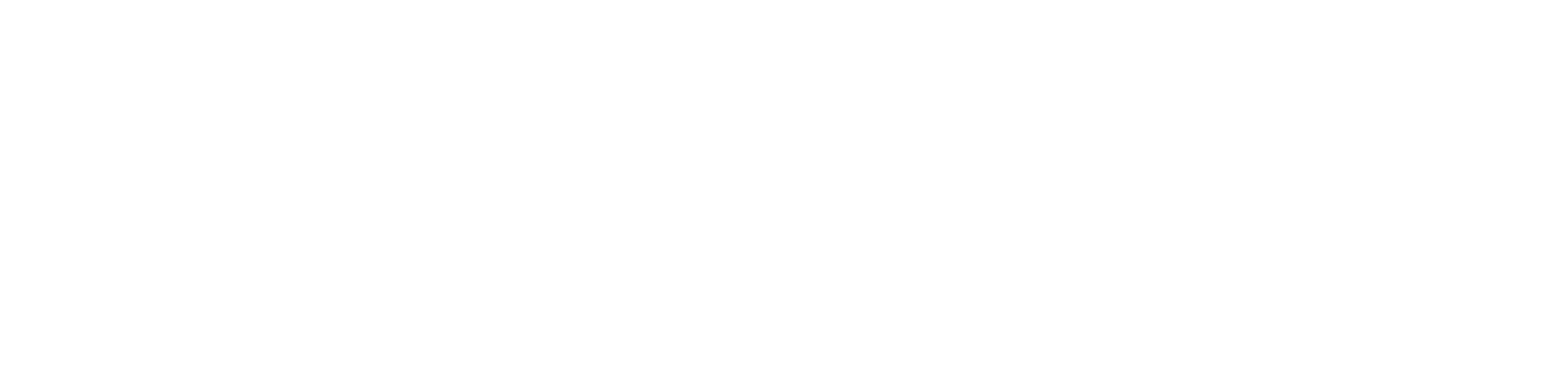 ACADEMIC ENGLISH SOLUTIONS