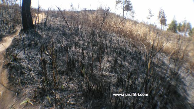 sisa kebakaran di puncak papanggungan gunung manglayang