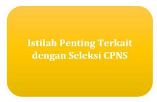 Istilah Penting Terkait dengan Seleksi CPNS