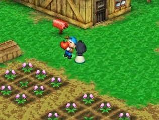 Cara Mendapatkan Semua Power berry Harvest Moon Back to Nature