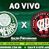 Jogo Palmeiras x Atlético-PR Ao Vivo