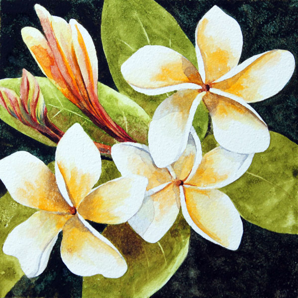 Nancy Goldman Art: Tropical Fragrance - Watercolor