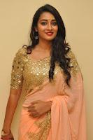 Bhanu Shri looks stunning in Beig Saree choli at Kalamandir Foundation 7th anniversary Celebrations ~  Actress Galleries 009.JPG