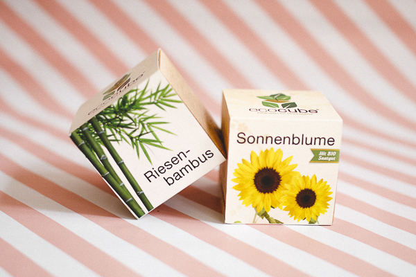 https://www.cadeauxfolies.fr/ecocube-plantes-dans-des-cubes-en-bois