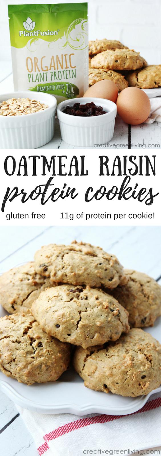 oatmeal raisin protein cookies recipe