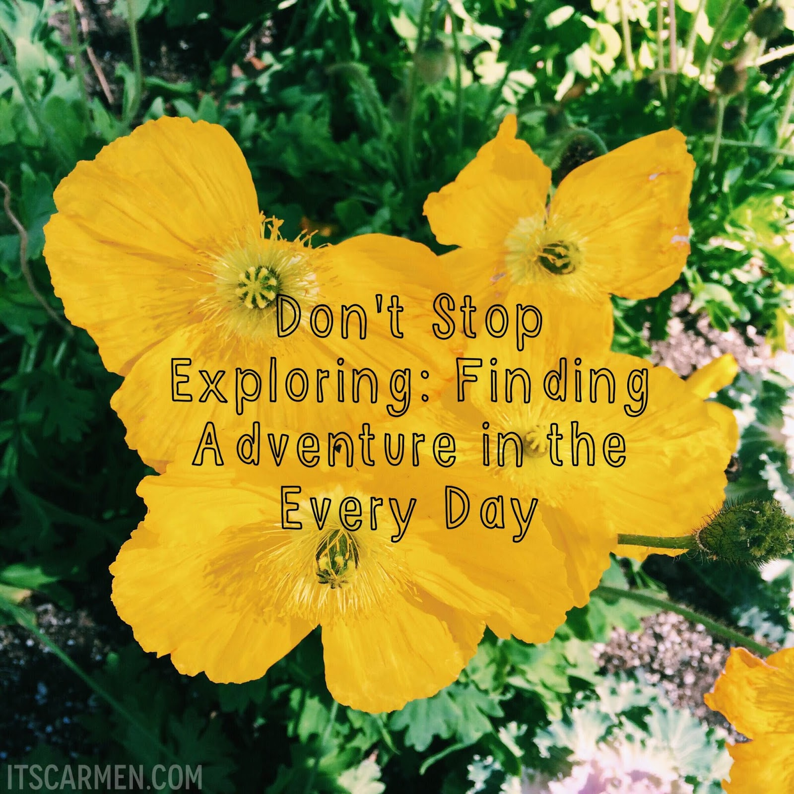 don't stop exploring