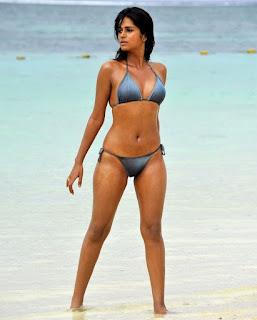 Celebsbay Shraddha Das Hot Bikini S From Mogudu