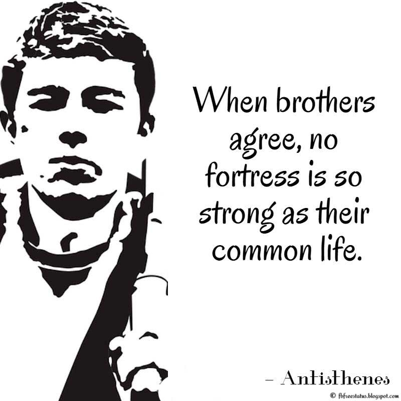 Brother Quote: When brothers agree, no fortress is so strong as their common life. Antisthenes