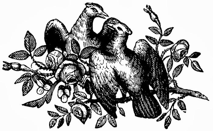 Коллекция картинок Трафарет Книжный орнамент