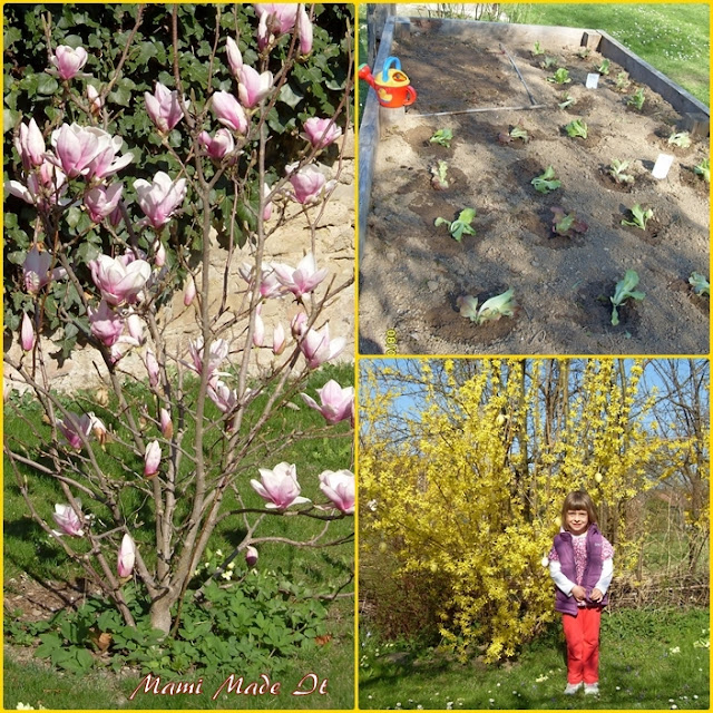 Garden Awakening - Der Garten erwacht
