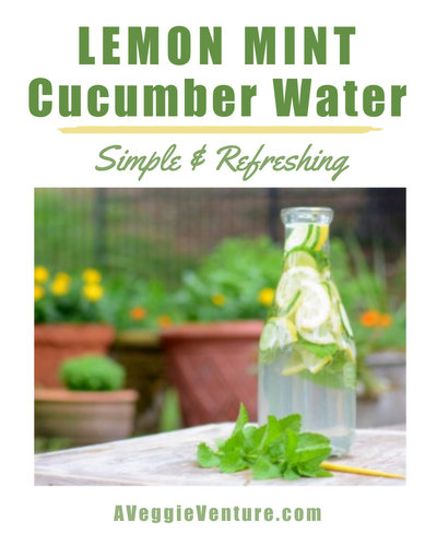 Lemon Mint Cucumber Water ♥ AVeggieVenture.com, a great way to stay hydrated.