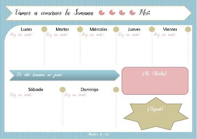 Cómo Organizar tu Agenda o Planificador Semanal