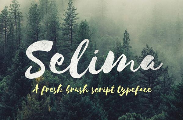20 Script Font Terbaik 2016 - Selima Free Typeface