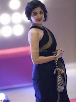 Poonam Kaur Saree New Pics 008.jpg