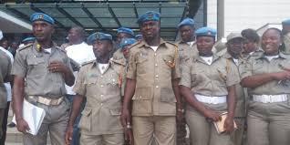 peace corp nigeria
