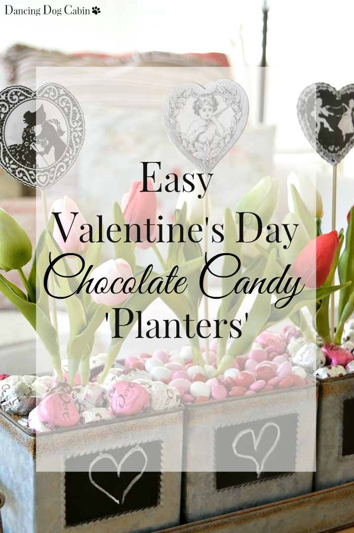 Dancing Dog Cabin: Easy Valentine\'s Day Chocolate Candy \'Planters\'