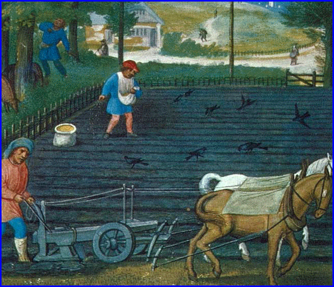 TENTH CENTURY - RURAL ECONOMY AND COUNTRY LIFE