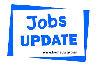 jobs update financial advisorteam leader