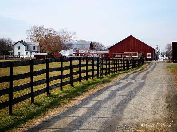 fence and farm