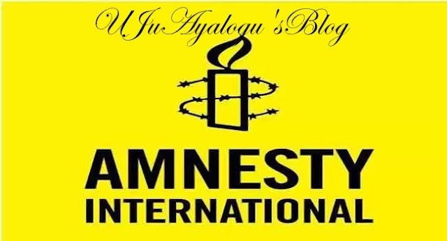 We're not sabotaging your efforts, Amnesty International replies Nigerian Army