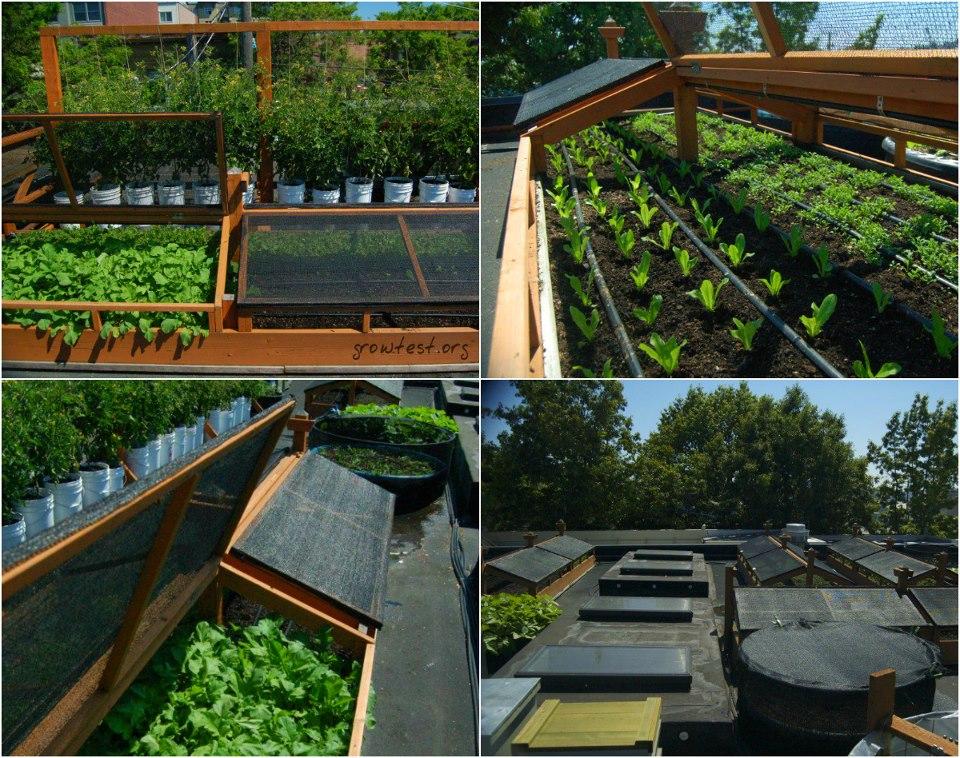 Mil ideas para la casa y el jardin ideas para el huerto for Vivero casa jardin