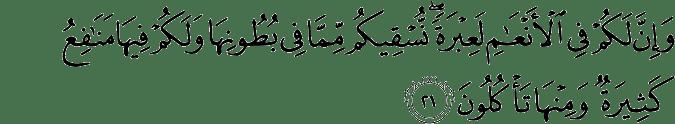 Surat Al Mu'minun ayat 21