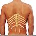 Ο πόνος στην μέση μήπως οφείλεται στα νεφρά; Συμπτώματα νεφρολιθίασης και οξείας νεφρικής ανεπάρκειας