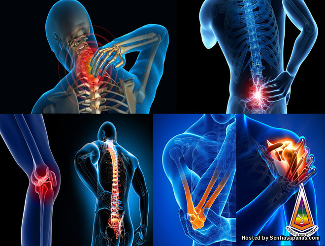 Punca Sakit Tulang Belakang
