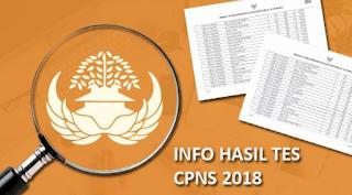 Tes SKD CPNS 2018