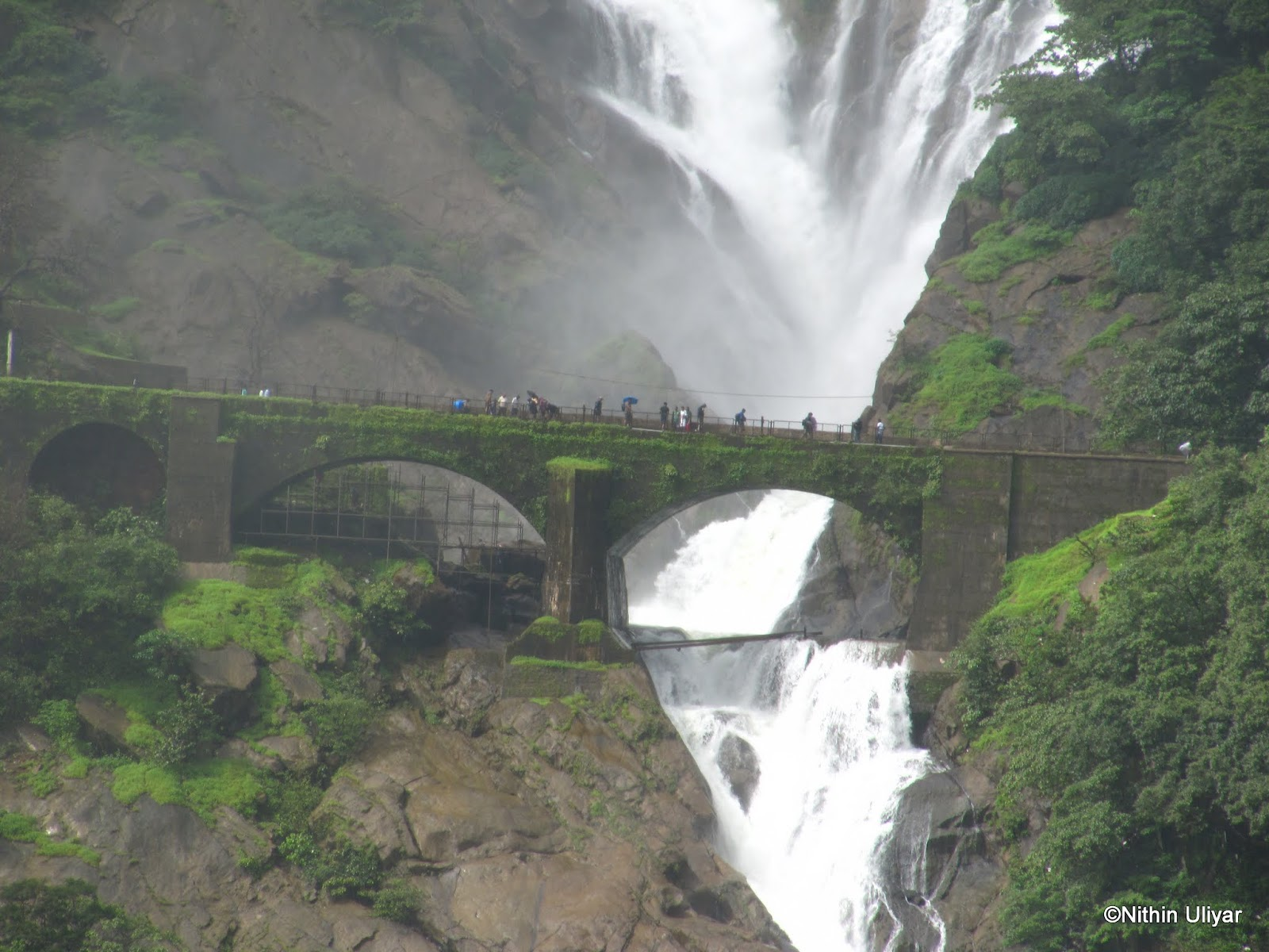 Make My Trip My Quot Earthly Quot Experiences Dudhsagar Trek With Goa Under