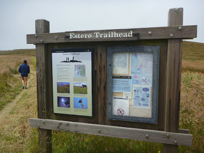 Estero Trailhead, Point Reyes, California
