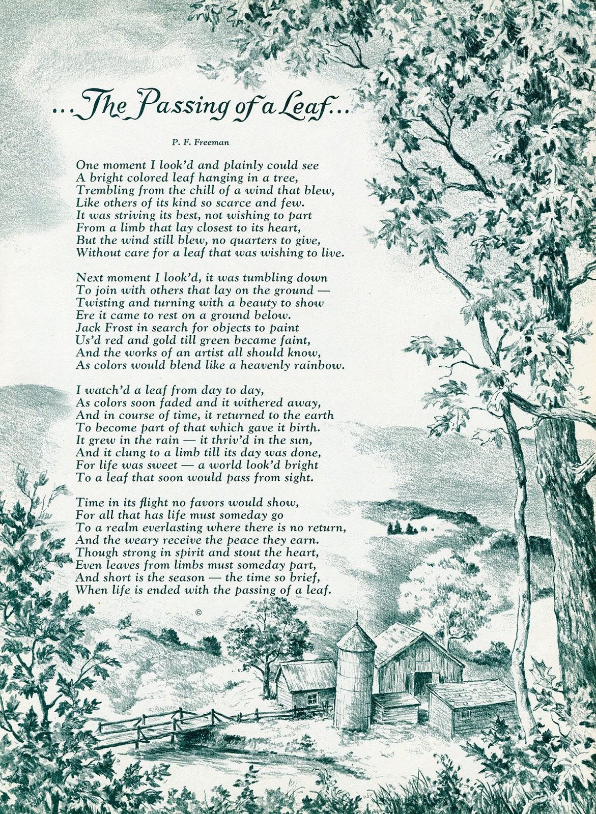 Brady\'s Lorain County Nostalgia: Autumn Foliage Circa 1961