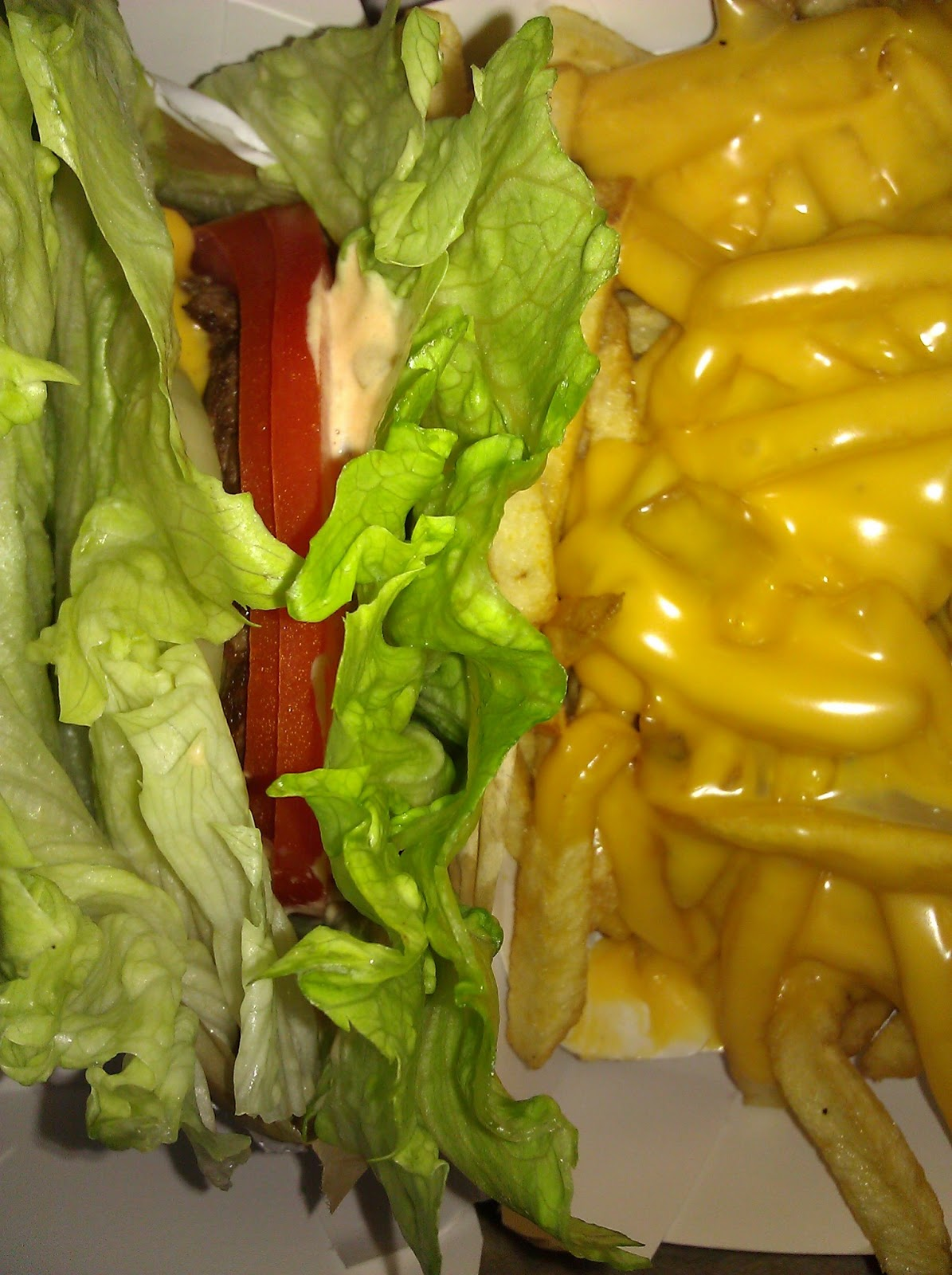 Seeing is Eating: IN N OUT Protein Style Cheeseburger