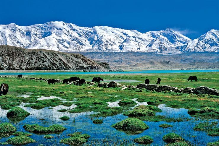 [塔吉克/帕米爾] 帕米爾高原(Pamirs)及入境中國 交通資訊/過海關經驗分享